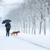 Temporal de nieve en Madrid: Carreteras, dispositivo y zonas afectadas, última hora en directo