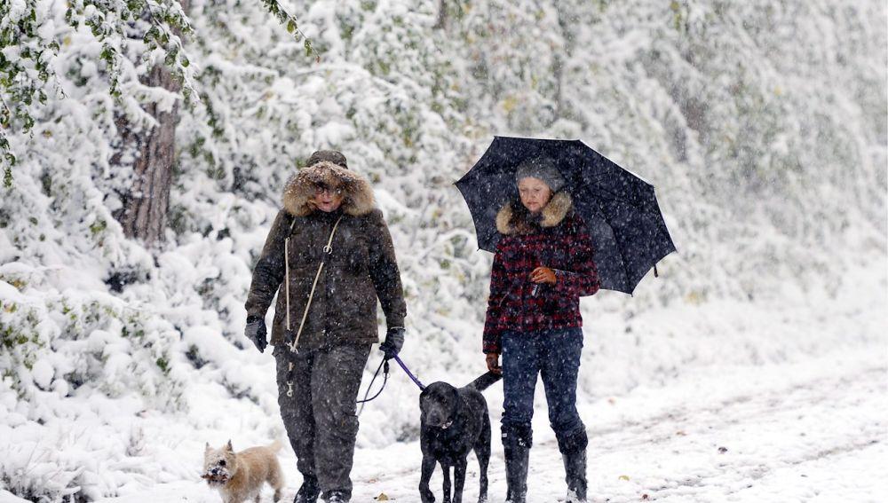 Dos personas pasean a sus perros en la nieve