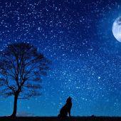 Luna llena de Lobo: horario, cómo ver hoy y qué significa