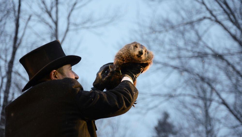 El día de la Marmota: imagen de la marmota Phil