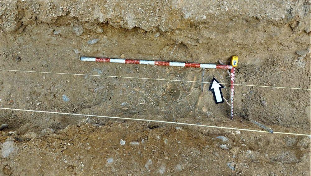 Restos óseos hallados durante una intervención arqueológica en Fuentes de Andalucía
