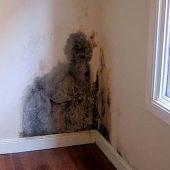 ¿Cómo identificar y tratar los diferentes tipos de humedades en el hogar?
