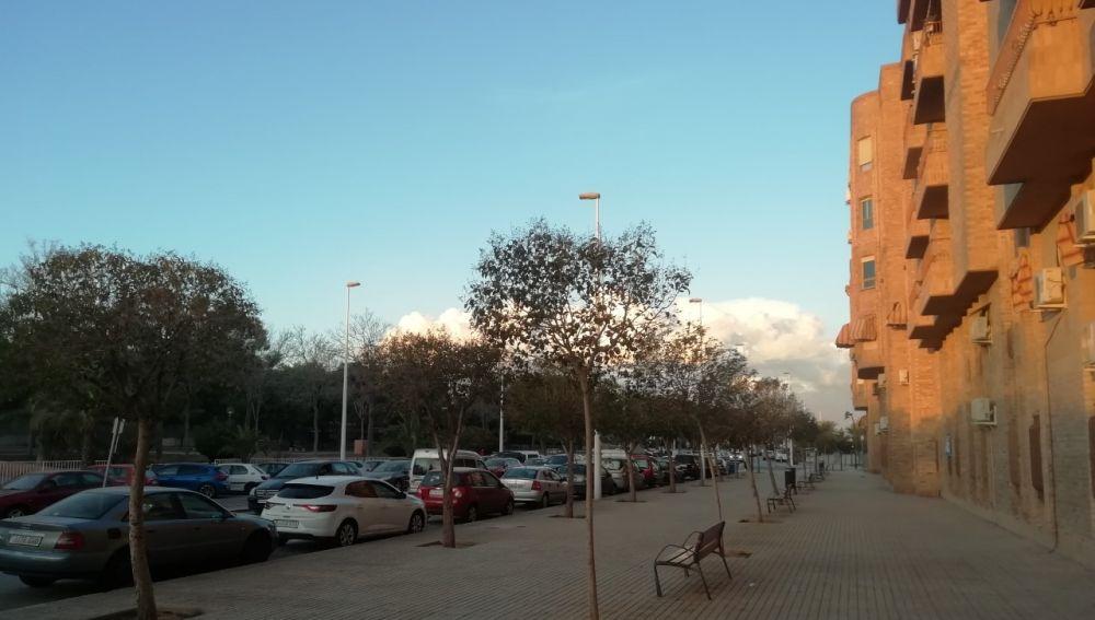 Avenida Maestro Melchor Botella de Elche.
