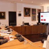 Imatge de la reunió telemàtica entre Economía, grups politics i gestors