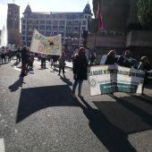 Manifestación AUPA León
