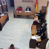 El Pleno aprueba el Plan de Igualdad y una modificiación presupuestaria como ejes centrales del orden día