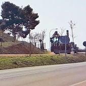 Salicor-Ecologistas en Acción de Campo de Criptana en contra del arranque de árboles en el camino del Cristo