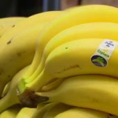 Plátanos de Canarias