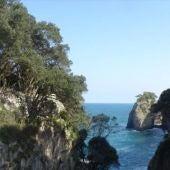 La Coordinadora reclama a Cultura la protección de la cueva del Pindal .