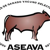 La Junta Electoral de ASEAVA defiende su actividad y decisiones.