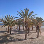 Playa de Santa Pola.