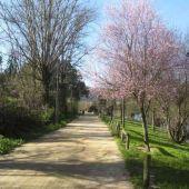 O Concello porá en valor o paseo do río Miño como gran zona de lecer da cidade