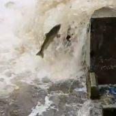Los pescadores urgen mejoras en su situación