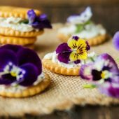 Flores y comida