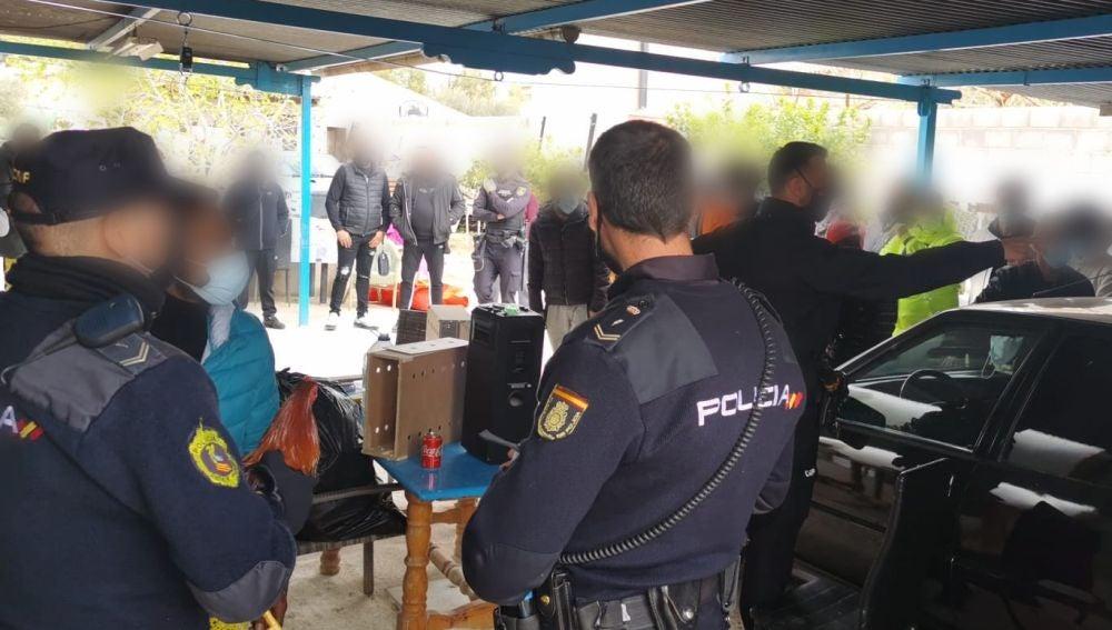 La policía identifica a los asistentes a la pelea de gallos