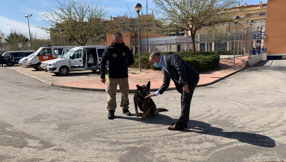 La Policía Local de Albacete podría contar con una unidad canina en la capital