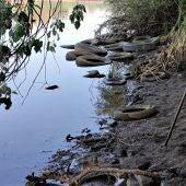 Vertidos de neumáticos en el río Guadiana
