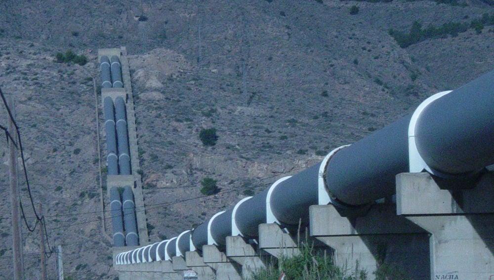 Especialmente, de la comarca de la Vega Baja y del Bajo Vinalopó, principales zonas regadas con los aportes del Trasvase Tajo-Segura