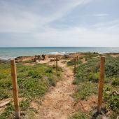 La actuación se enmarca en las labores de conservación de la biodiversidad local, especialmente ligada a zonas litorales colindantes a playas galardonadas con Bandera Azul