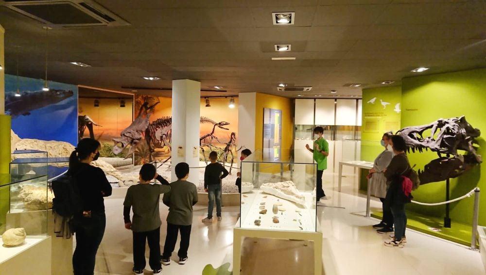 Las visitas al Museo Paleontológico de Elche han aumentado un 28% esta Semana Santa