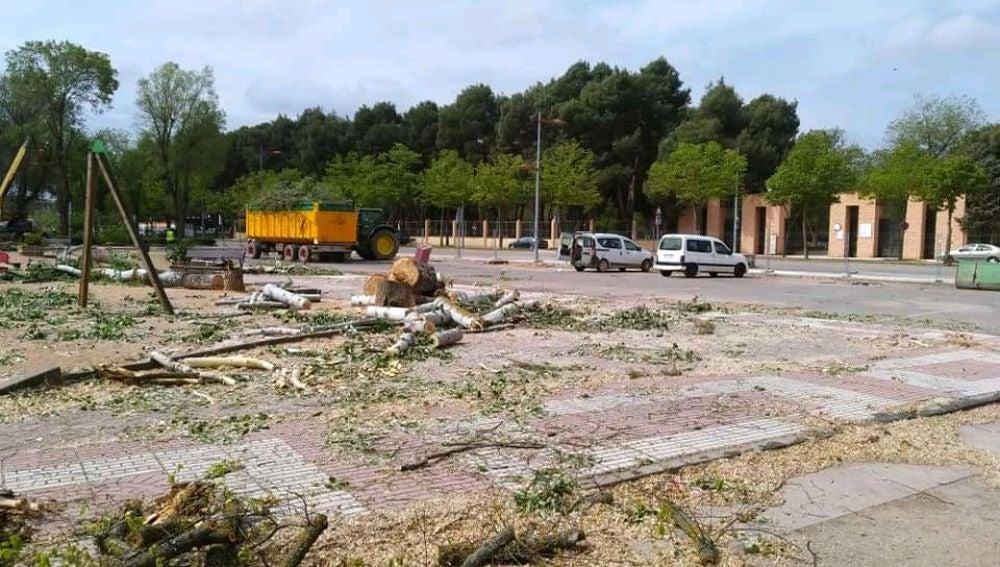 EQUO Alcázar Vecinal pide que se reúna la Mesa del Arbol