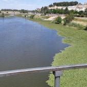 """Salvemos el Guadiana cree que hacer navegable el río en Badajoz sería """"empezar la casa por el tejado"""""""