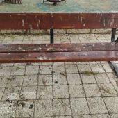 El PSOE pide una campaña de limpieza para eliminar la ingente suciedad acumulada por los excrementos de palomas