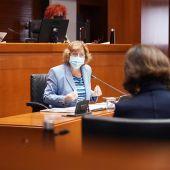 La consejera María Victoria Broto ha comparecido a petición del PP