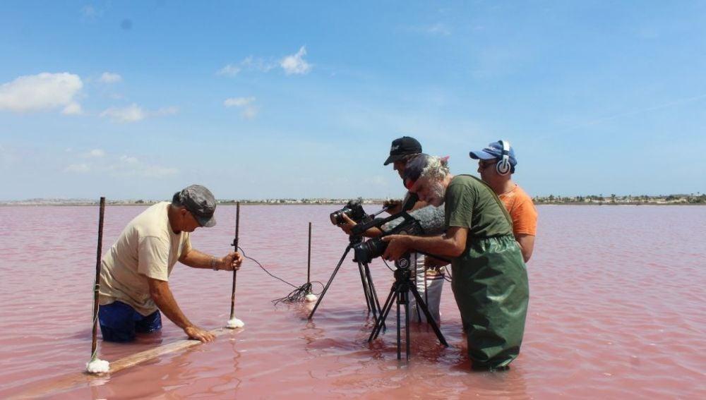 Eldocumentaldescribe el proceso de realización de laartesaníasalinerade Torrevieja, una actividad de gran arraigo y tradición entre los trabajadores de las salinas, en riesgo de desaparición