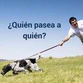 """Uno de los problemas más frecuentes de los propietarios de perros """" ¿Soy yo quién pasea o es mi perro?"""""""