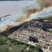 El incendio del Parque Natural de las Salinas de Torrevieja tendrá un gran impacto en algunas especies de gran interés que habitan el saladar