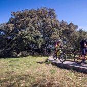 Bicicletas eléctricas en el entorno de la carrasca de Lecina