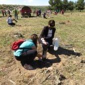 Continúa el Plan Integral de Educación Medioambiental con una plantación de árboles en la antigua escombrera