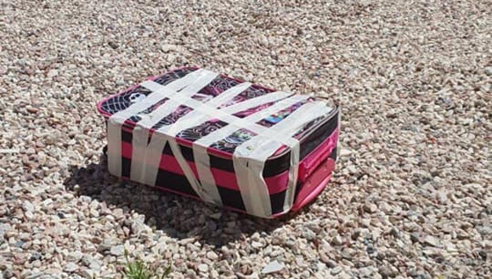 Cinco cachorros de gatos son rescatados de una maleta precintada a pleno sol en Alicante