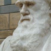 L'evolució és ciència, gràcies a Darwin