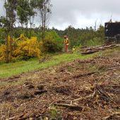 OS terreos forestais próximos a viviendas teñen que estar limpos antes do 31 de Maio