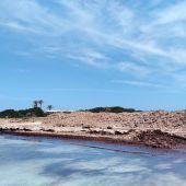 El Consell de Formentera ofrece la posidonia retirada de las playas para su uso tradicional