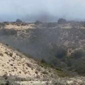 Nubes de mosquitos en la Sierra de Alcubierre