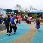 Apenas una semana después de la inauguración de la 10ª Expo Internacional de Flores de Shanghái, el Pabellón de Orihuela ha comenzado a dar sus frutos