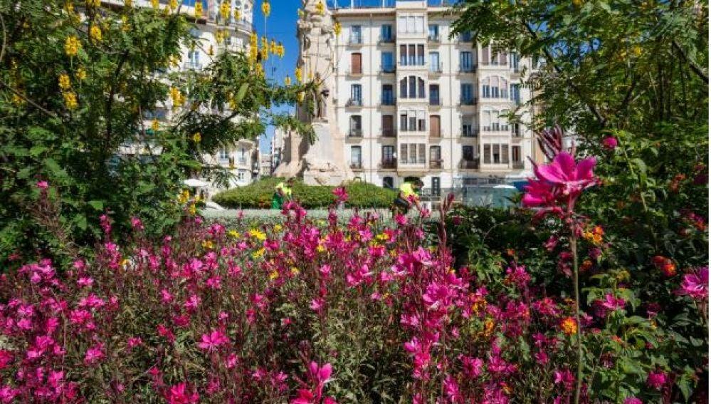 La Plaza de Canalejas con la nueva vegetación