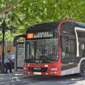 Los autobuses urbanos siguen recuperando usuarios tras la pandemia