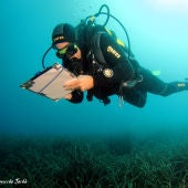 Seguimiento submarino dentro del programa POSIMED