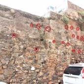 El Festivalino de las Aves de Cáceres identifica más de 100 nidos de vencejos en un tramo del adarve de la muralla