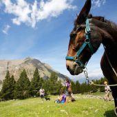 Rutas de Trekking Mule