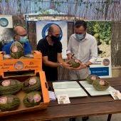 La Comunidad de Regantes de Carrizales espera obtener este año 350.000 kilos de melones frente a los 600.000 del año pasado