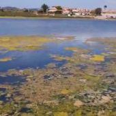 El 28 octubre expira el plazo y aún faltan 276.000 firmas para dotar de personalidad jurídica al Mar Menor