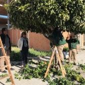Almoradí pone en marcha su taller veraniego de empleo Amarión XVIII