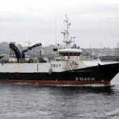 Punta Vixía. Imagen de la web Vesselfinder