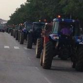 Viticultores de Valdepeñas vuelven a convocar una tractorada de protesta
