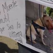 Pancarta con uno de los perros fallecidos
